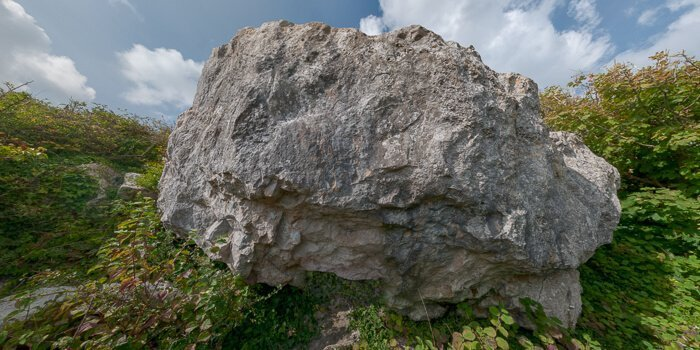 Jungle Boulder virtual tour